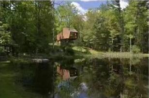 美丽乡村是我家打造自己私家微农场(林场)